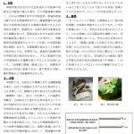 成果報告ー福田先生